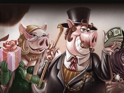 Турнир «Животное» в казино Joy – покажи свои зубы в борьбе за прогрессивный джекпот!