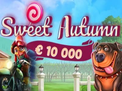 Sweet Autumn Tournament – раздели €10,000 на турнире в казино Aplay